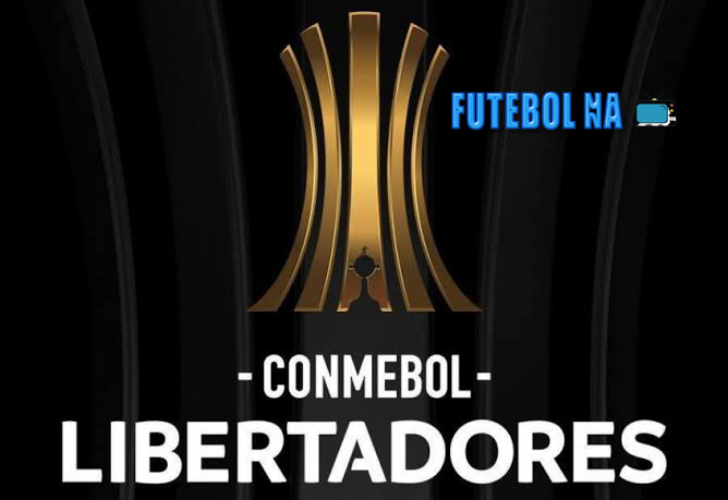 Confira como foi os clubes brasileiros na Libertadores nesta terça-feira 01/12