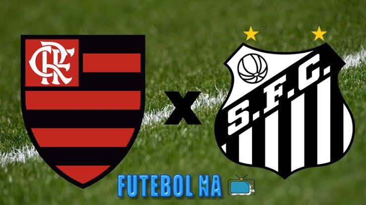 Assistir Flamengo x Santos ao vivo - Brasileirão 2020